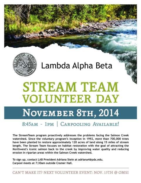 stream team flyer_Page_1
